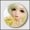 Design Button - D0062