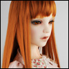 (13-14) Forest Straight Wig (D.Carrot)