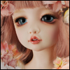 Lusion Doll - Pink Ballerina Shoes ; Alice - LE5