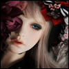 Trinity Doll - Now To Eternity ; Elysia - LE10