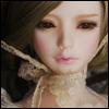 Zaoll - Hertfordshire Lilac ; Luv - LE10