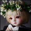 (7-8) Pure Flower Garlands (White)