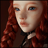 Zaoll - Will Shall Decide Destiny Luv - LE10