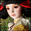 Zaoll Collaboration - Red Ribbon Alexia - LE10