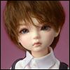 (7-8) Farach Short Cut Wig (Brown)