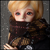 Model & MSD - Check Woollen Muffler (N - Brown)