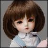 (6-7) Pageboy Cut Wig (Brown)