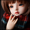 Model & MSD - Chrono Check Woollen Muffler (Red)