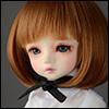 (6-7) SSC Short Wig (Brown)