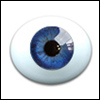 10mm Oval Real Type PaperWeight Glass Eyes - Cobalt (Real Type)